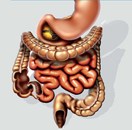 Obstipatie en diarree